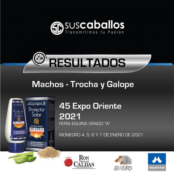 https://suscaballos.com/RESULTADOS MACHOS TROCHA Y GALOPE COLOMBIANO