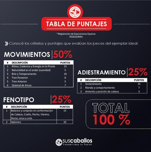 http://suscaballos.com/TABLA DE PUNTAJES