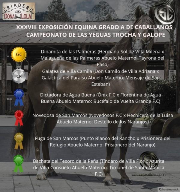 http://www.suscaballos.com/VÍDEO: Dinamita Campeona, Galatea Reservada, Trocha y Galope, Caballanos 2018