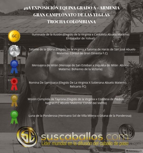 http://suscaballos.com/VÍDEO: Iluminada Campeona, Salome Reservada, Trocha Colombiana, Armenia 2017