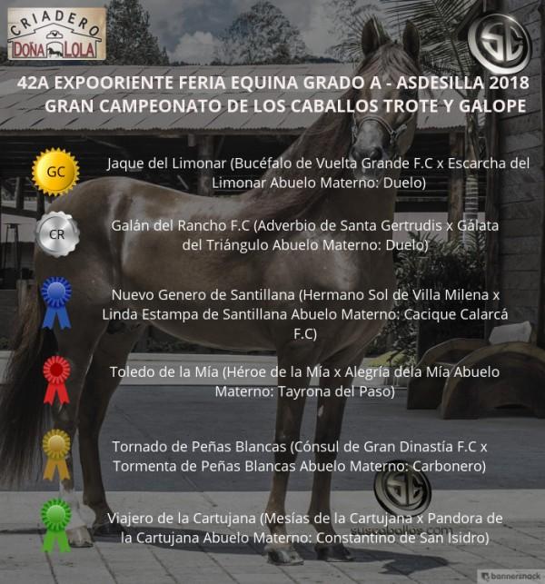 http://www.suscaballos.com/VÍDEO: Jaque Campeón, Galán Reservado, Trote Y Galope, Expooriente 2018