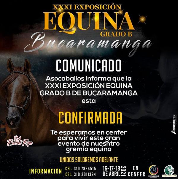 https://suscaballos.com/XXXI EXPOSICIÓN EQUINA GRADO B EN BUCARAMANGA